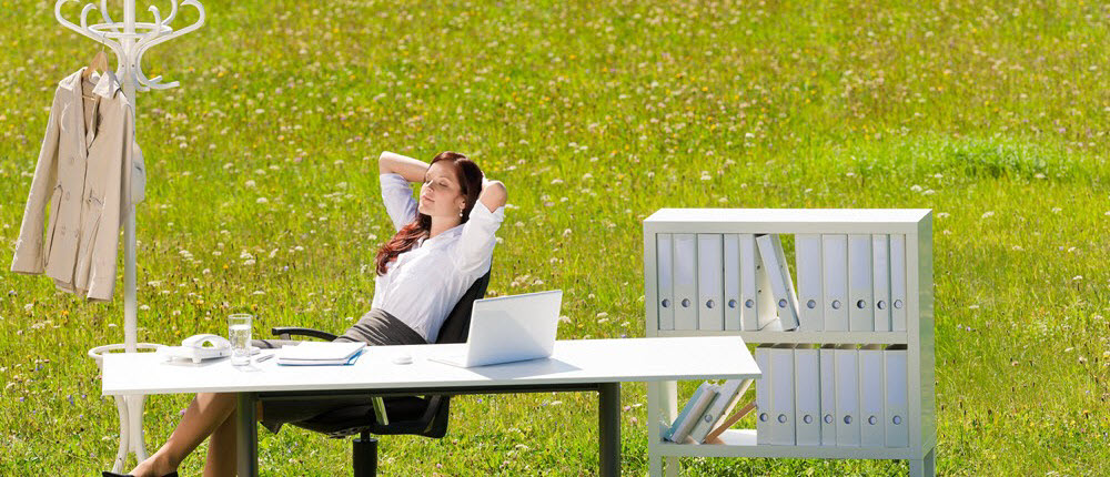 Office in nature